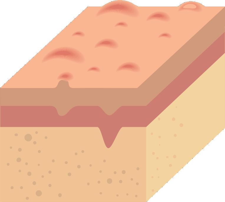 icone pele 3